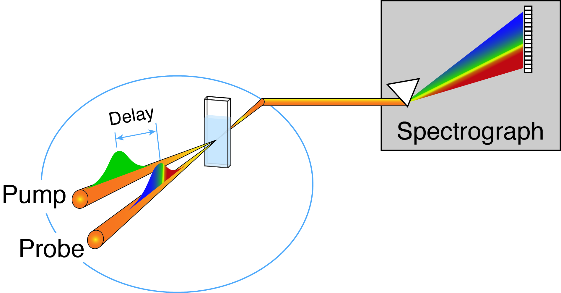 Transient Absorption Spectroscopy | Elles Research Group